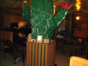 Интерьер кафе кактус