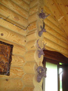 Головы животных из дерева на стену